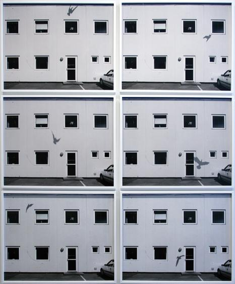 Nicolai Howalt Six Seahawks and One Building, 2009    Chromogenic prints. 26 1/4 x 32 1/16 inches each