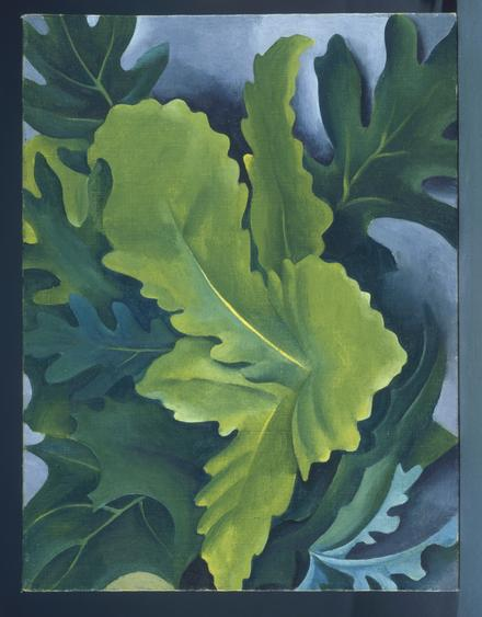 Georgia O'Keeffe  Green Oak Leaves, 1923    Oil on canvas mounted on board. 12 x 9 inches