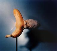 Bullet Through Banana, 1938-1973 Dye transfer print 16 x 20 inches
