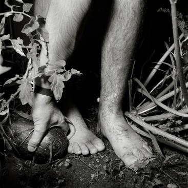 Legs in a Garden, New York, 1987 Gelatin silver print, printed 1987 20 x 16 inches