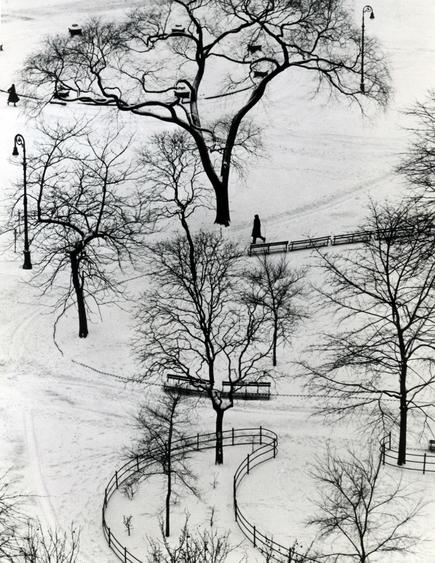 Washington Square Day, 1954 Gelatin silver print, printed c. 1954. 9 5/8 x 7 1/2 inches