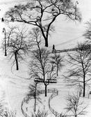 Andre Kertesz, Washington Square Day