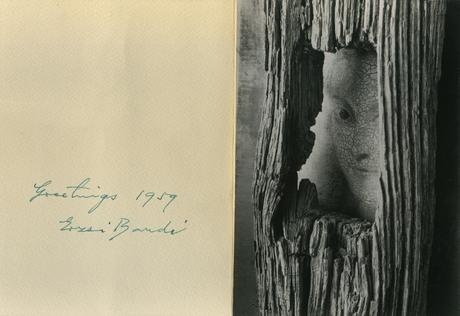 André Kertész Face in Tree, 1959 Gelatin silver print  7 x 5 in.