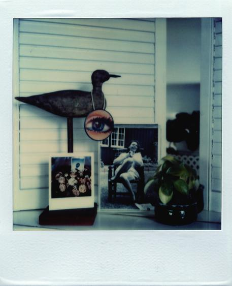 June 24, 1979 SX-70 Polaroid 4 1/4 x 3 1/2 inches