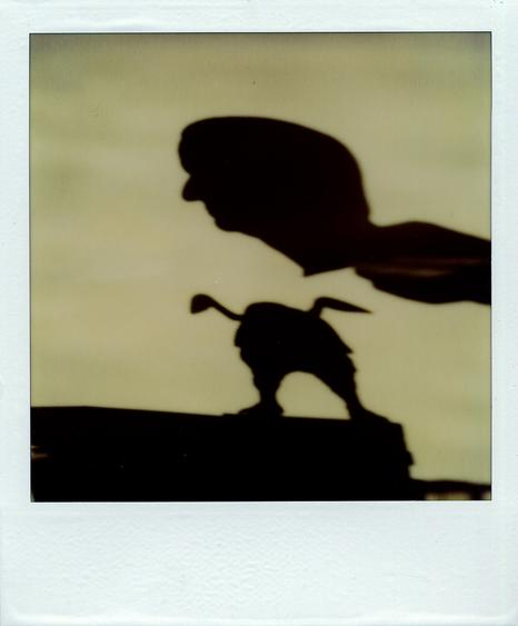 September 19, 1979 SX-70 Polaroid 4 1/4 x 3 1/2 inches