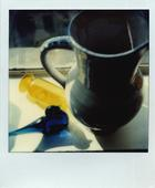 April 20, 1980 SX-70 Polaroid 4 1/4 x 3 1/2 inches
