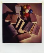 January 28, 1979 SX-70 Polaroid 4 1/4 x 3 1/2 inches