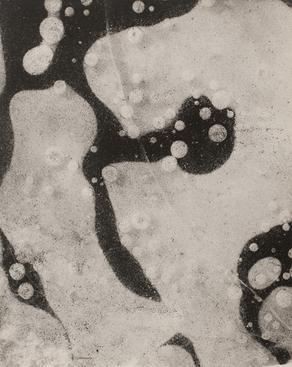 Arthur Siegel, Untitled (Photogram), 1949 Gelatin silver print, 16 x 20 in.