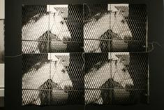 Untitled stitch photograph, (Horse, Claremont Stables), 1976-86 Four gelatin silver prints sewn together and mounted to board 21 x 27 inches