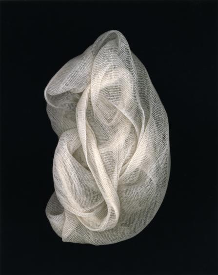 Arrangement #6, 2002 Chromogenic print