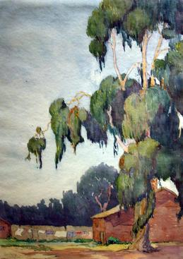 Early California Eucalyptus Tree, 1921 Watercolor on paper 14 x 10 inches
