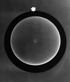 Photogram, 1942 Photogram mounted to board, printed 1942 12 x 10 inches