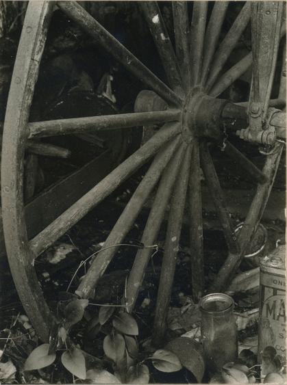 Untitled, 1930 Gelatin silver print mounted to board, printed c. 1930 4 x 3 inches