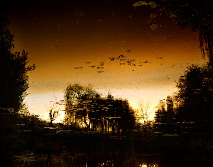 Giverny VII, 2010 Chromogenic print 72 1/2 x 98 1/2 inches