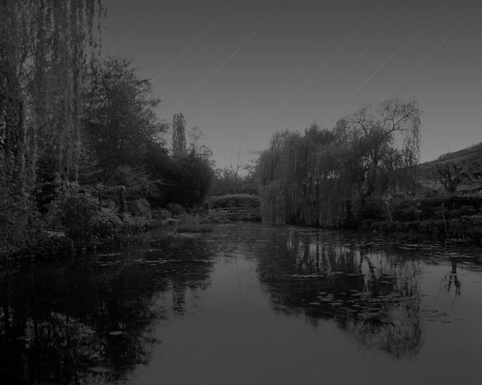 Giverny I, 2010 Chromogenic print 72 1/2 x 90 1/8 inches