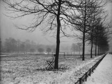 Green Park in the Snow, London, c. 1927 Gelatin silver print, printed c. 1927 5 3/4 x 7 3/4 inches