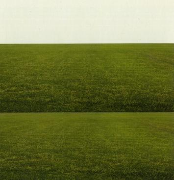 The Field and the Plane, 2007 Chromogenic print 36 1/2 x 35 inches