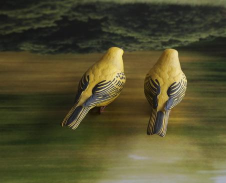 Yellow Birds, 2014     Chromogenic print. 25 x 30 3/4 inches