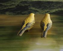 Yellow Birds, 2014 C-print