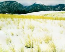 Eliot Porter Grass, Snow, Sangre De Christo, Mountains, Great Sand Dune National Monument, Colorado, September 30, 1958 Dye transfer print, printed c. 1962-69. 10 x 12 inches