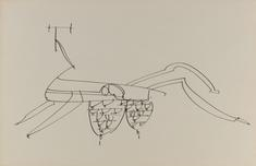 Frederick Sommer Untitled, n.d. Pen and ink drawing on paper. 12 x 18 inches