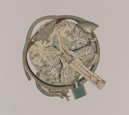 Frederick Sommer Untitled, 1997 Collage on paper. 13 x 14 5/16 inches
