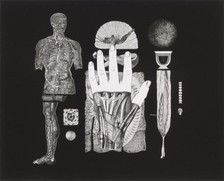 Frederick Sommer Untitled, 1991 Gelatin silver print mounted to board, printed c. 1991. 7 1/8 x 8 13/16 inches
