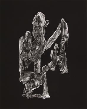 Frederick Sommer (1905-1999), Untitled (Paint on Cellophane), 1957 Gelatin silver print, 19 5/16 x 15 7/16 in.