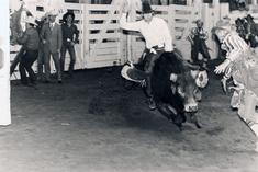 Untitled (Fort Worth Rodeo), c.1974-1977 Gelatin silver print 11 x 14 inches