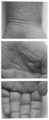 Hand, Three Panels Vertical, 1990 Three gelatin silver prints mounted to board, printed c. 2000 86 x 36 inches