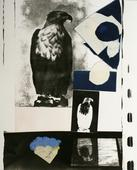 Eagle Postcard, 1987 Gelatin silver print, cyanotype, paper pulp collage mounted to board. 24 x 20 inches