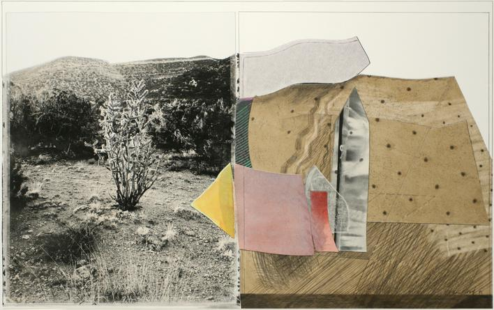 Monument: Ocotillo Cactus, 1991 Collage. 13 1/2 x 8 3/8 inches