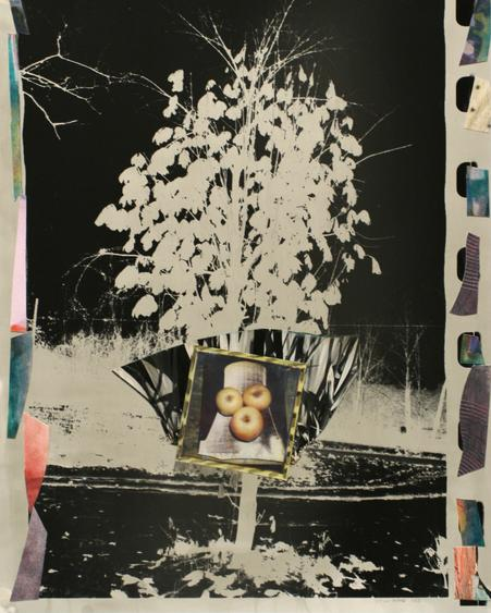 Pear Tree Cooling Tower and Apples, 1991 Collage. 19 1/4 x 15 3/8 inches
