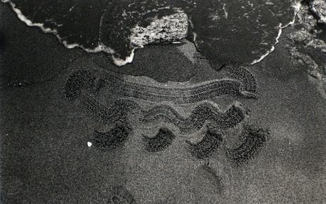Beach Drawing, 1983 Gelatin silver print 7 5/8 x 11 1/2 inches