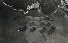 Beach Drawing, 1983 Gelatin silver print, printed c. 1983. 7 5/8 x 11 1/2 inches