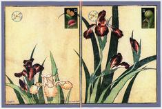 Hokusai And Eye Bring You These Irises; 31 May 2007 (verso)
