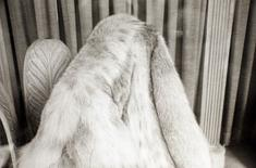 Fur Coat in Window, New York City, March 6, 1974 Gelatin silver print, printed 1974. 16 x 20 inches