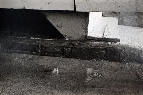 Step and Rain Drop, May, 1977 Gelatin silver print, printed 1977. 16 x 20 inches