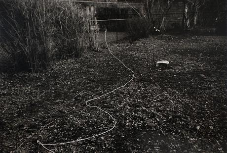 Rope on Ground, February, 1972 Gelatin silver print, printed 1972. 16 x 20 inches