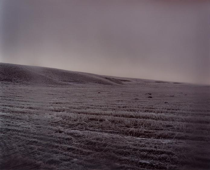 #5105, 2008 Chromogenic print. 38 x 48 inches