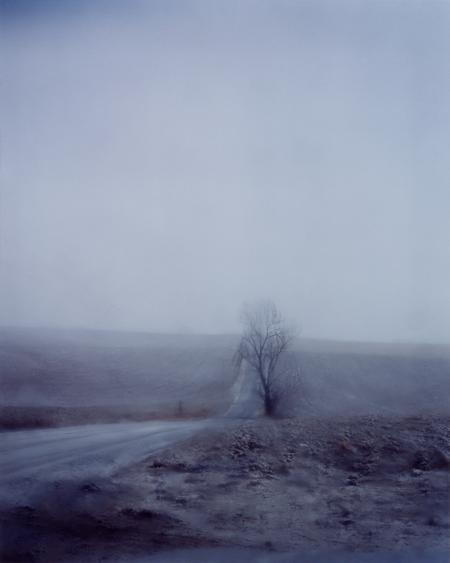 #5157, 2006 Chromogenic print. 48 x 38 inches