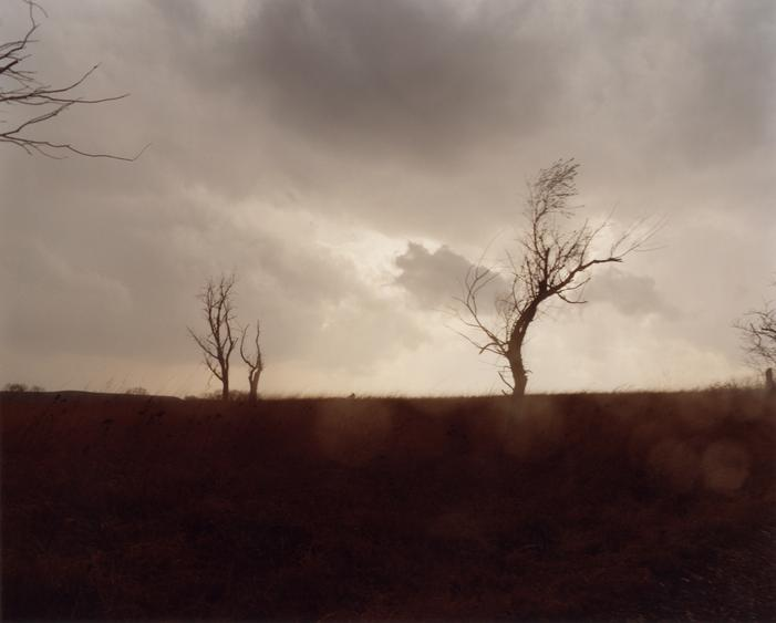 #5462, 2006 Chromogenic print. 38 x 48 inches