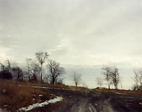 #6242, 2008 Chromogenic print. 38 x 48 inches