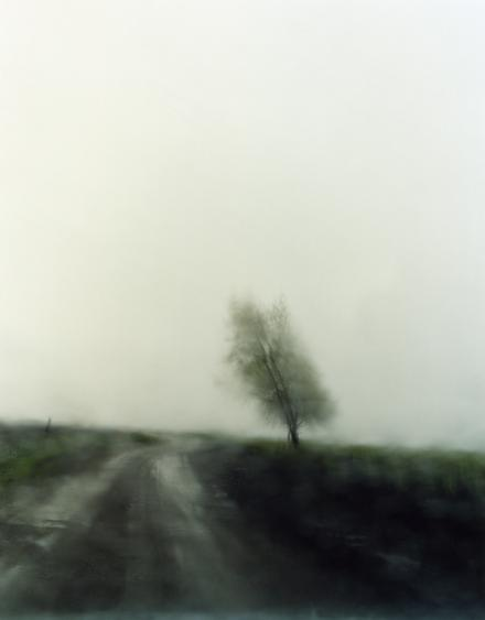 #6405, 2007 Chromogenic print. 38 x 30 inches