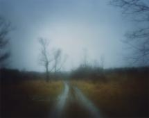 #8614, 2009 Chromogenic print. 30 x 38 inches