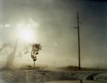 #6097, 2008 Chromogenic print. 20 x 24 inches