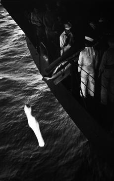 World War II, Marshall Islands, Burial at Sea, 1944 Gelatin silver print, printed c. 1960s 16 x 20 inches