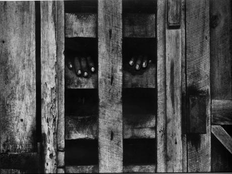 Hands in Stockade, Africa, 1954 Gelatin silver print, printed c. 1954 6 3/8 x 9 3/8 inches